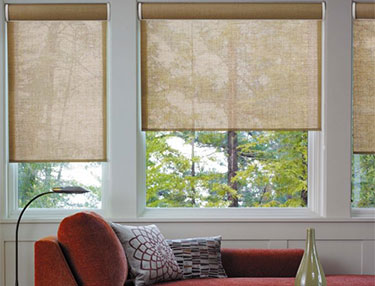 TWF_Alta-Roller-Shades_Features-and-Benefits_Customizable.jpg