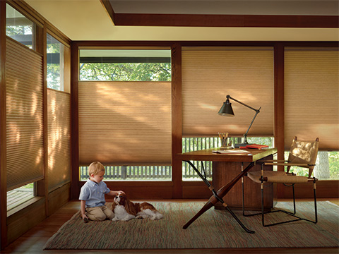 TWF_Design-Solutions_Window-Treatments-by-Function_Child-and-Pet-Safe_Tunnel-Image-2.jpg