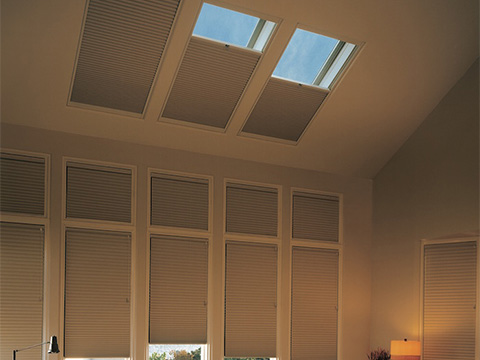 TWF_Design-Solutions_Window-Shape_Skylights_Design-Inspirations.jpg