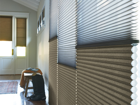 TWF_Design-Solutions_Window-Treatments-by-Function_Light-Filtering-and-UV-Protection_Tunnel-Image-1.jpg