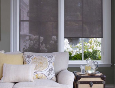TWF_Alta_Roller_Shades_Features_and_Benefits_Fresh_Outlook.jpg