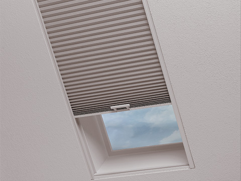 TWF_Design-Solutions_Window-Shape_Skylights_Tunnel-Image-1.jpg
