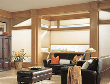 TWF_Alta-Honeycomb-Shades_Features-and-Benefits_Operational.jpg