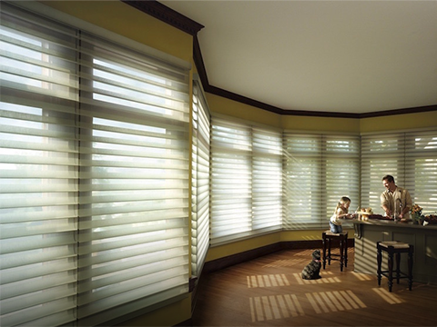 Motorized Silhouette®<br> Window Shadings