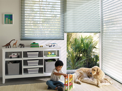 TWF_Design-Solutions_Window-Treatments-by-Function_Child-and-Pet-Safe_Tunnel-Image-1.jpg