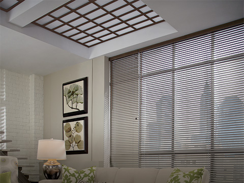 Natural Elements™ Blinds with Skylift™