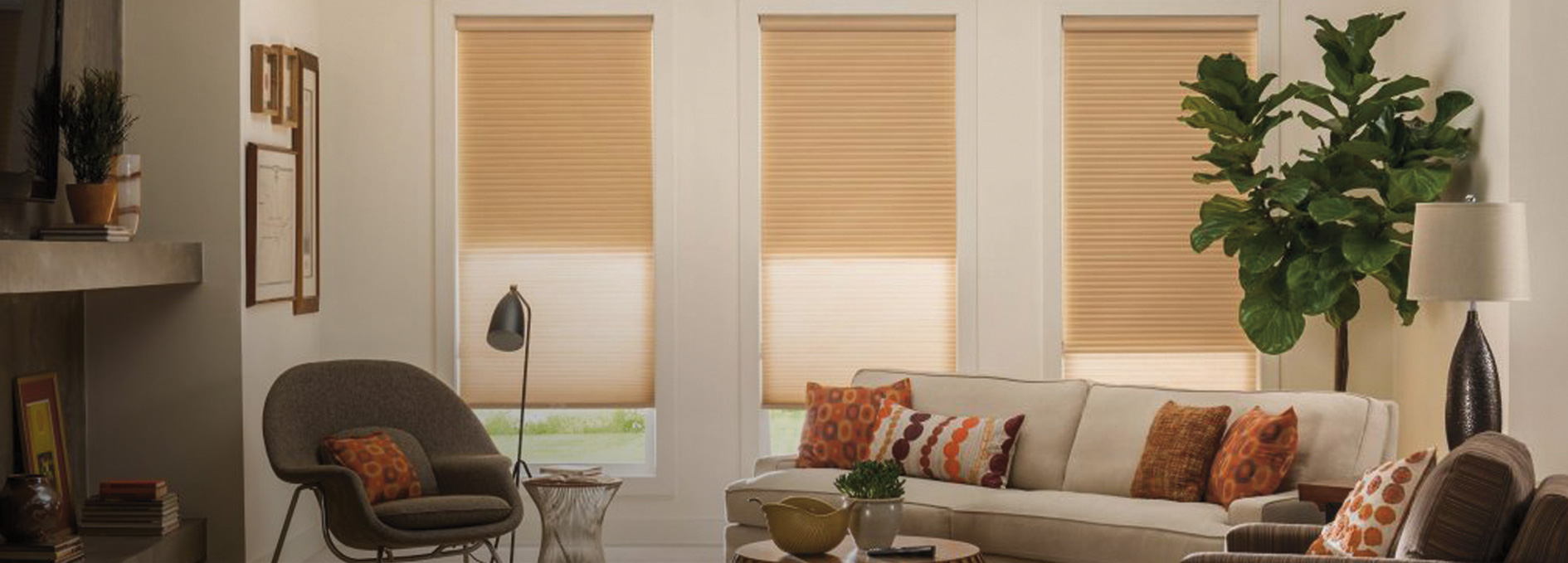 room southwest phoenix alta shade natural shutters blinds living and shades