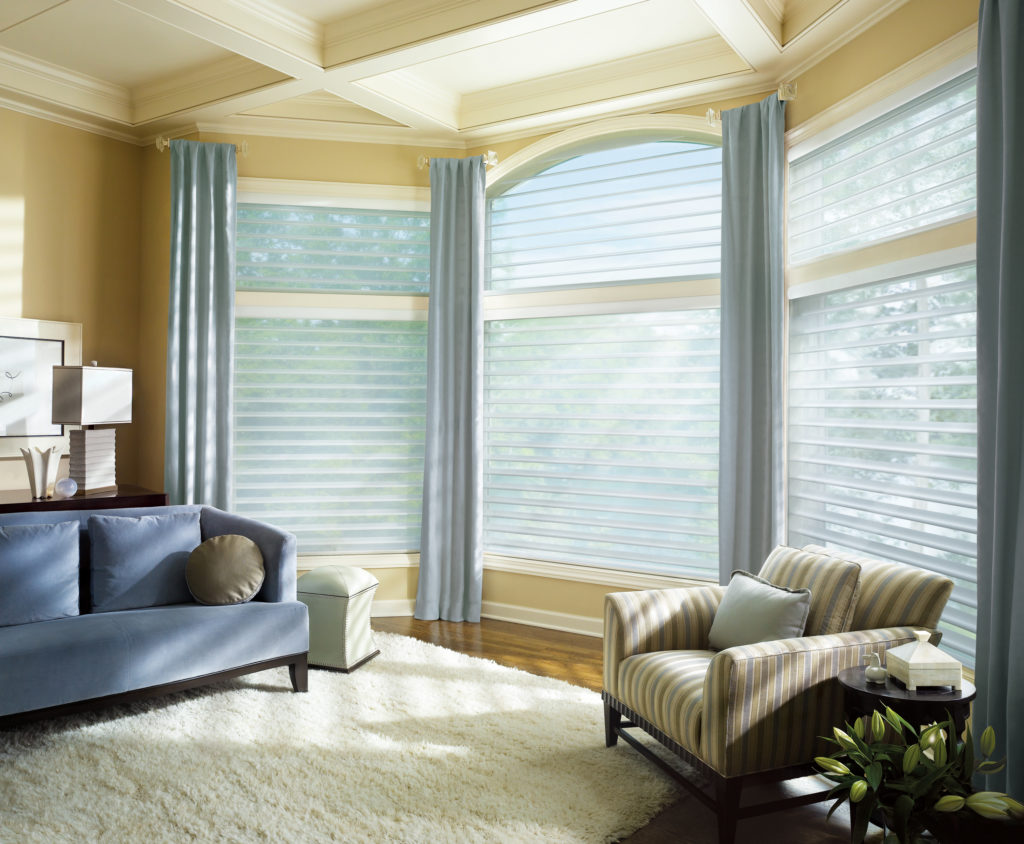 Silhouette Window Shadings-Current Special